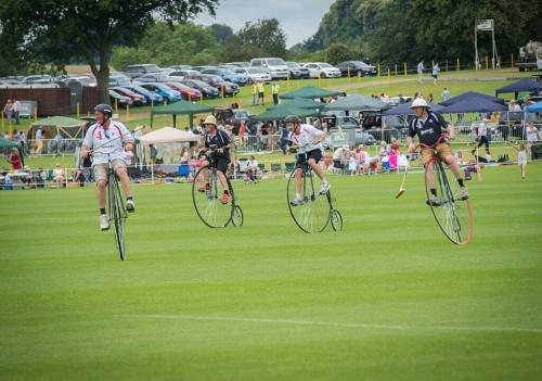 penny farthing polo match action