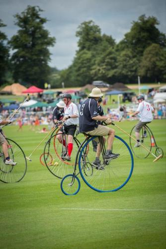 penny farthing polo players